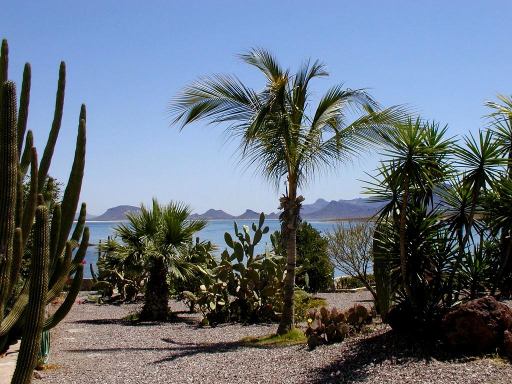精选墨西哥风景