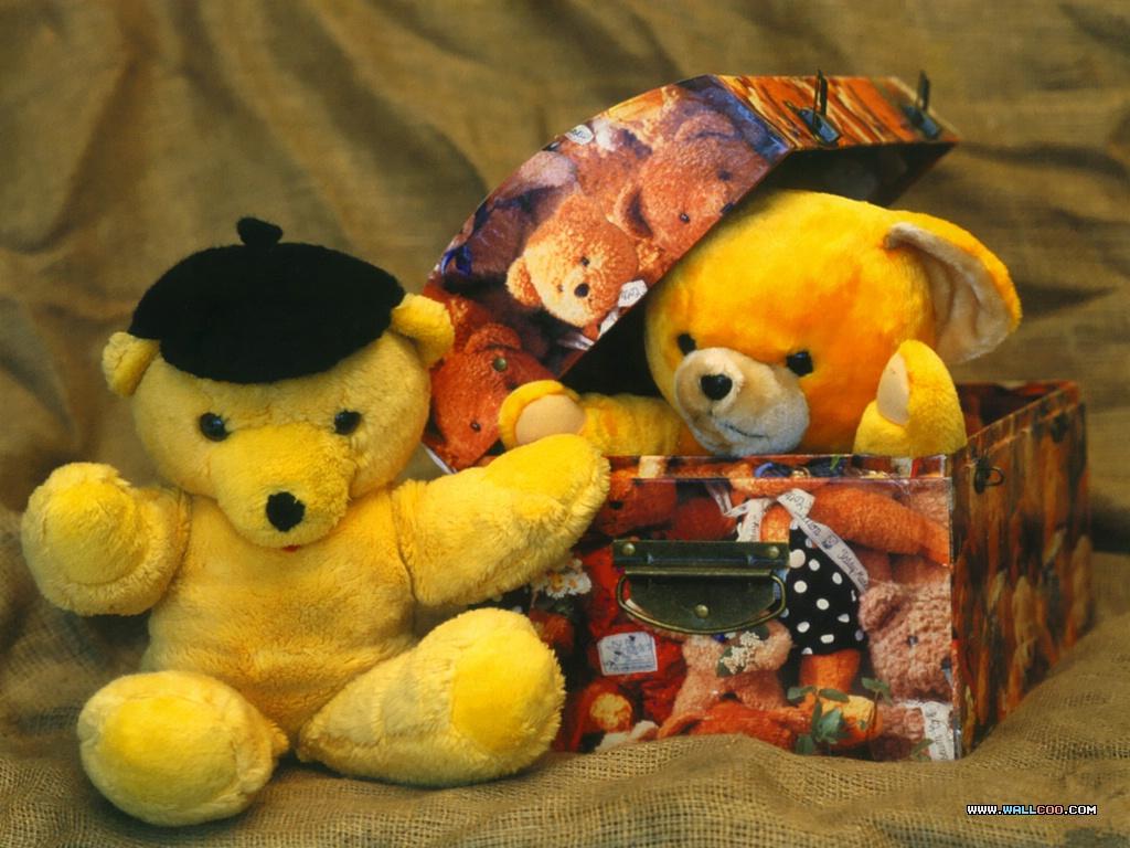 可爱泰迪熊图片集