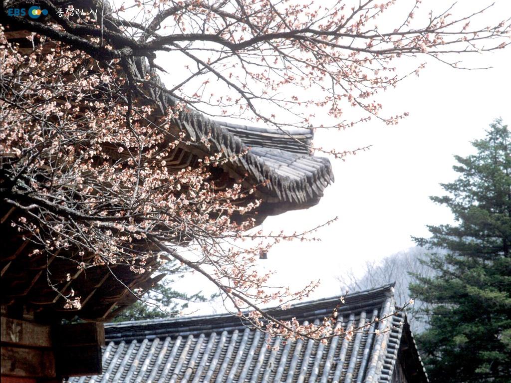 韩国风景壁纸专辑28张